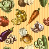 Vegetables sketch color seamless pattern Stock Photography