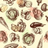 Vegetables sketch seamless pattern Stock Photography