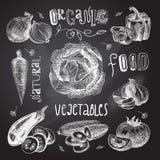 Vegetables Sketch Set Chalkboard Royalty Free Stock Photography