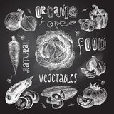 Vegetables sketch set chalkboard Royalty Free Stock Photography