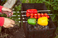 Vegetables skewer Stock Image