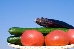 Vegetables in the sky stock image
