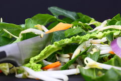Vegetables sliced stir fry Royalty Free Stock Photos