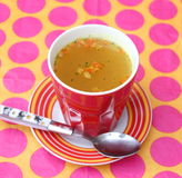 Vegetables Soup. A chicken soup with vegetables Stock Photos