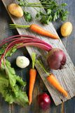 Vegetables for soup. Royalty Free Stock Photo