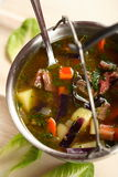Vegetables soup with meat in the dish Royalty Free Stock Photos