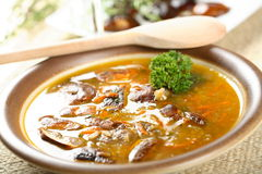 Vegetables soup with mushrooms Stock Photo