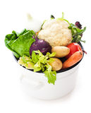 Vegetables for soup Royalty Free Stock Image