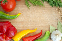 Vegetables and spices border Stock Photography