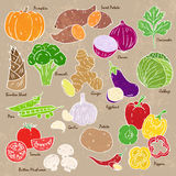 Vegetables and spices. Collection of hand-drawn vegetables and spices Royalty Free Stock Image