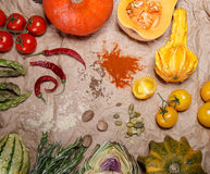 Vegetables and spices. Composition with raw vegetables and spices Stock Images