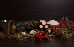 Vegetables and spices Stock Images