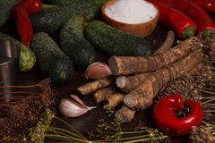 Vegetables and spices Royalty Free Stock Photos