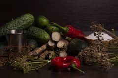 Vegetables and spices Royalty Free Stock Images