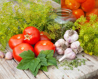 Vegetables and spices on wooden plank. Homemade canned tomatoes Stock Photography