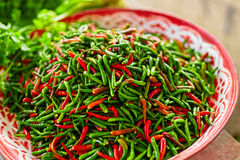Vegetables. Spicy Chili Peppers In Market. Nutrition. Healthy Fo. Vegetables. Close Up Of Organic Spicy Hot Red And Green Chili Peppers In The Farmers Market In Stock Images