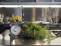 Vegetables on the steel worktop Stock Images