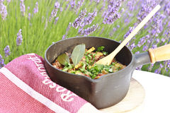 Vegetables stew. Simple and healthy recipe of stew with summer vegetables and herbs Royalty Free Stock Images