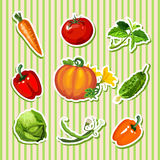 Vegetables sticker: carrot, pumpkin and other Royalty Free Stock Photography