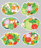 Vegetables sticker Stock Photos