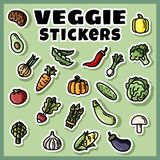 Vegetables stickers colorful set. Collection of veggie flat labels vector illustration