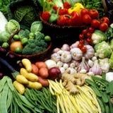 Vegetables still life Stock Photos