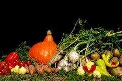 Vegetables still life Royalty Free Stock Image