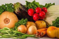 Vegetables still life. Including carrots, pumpkin, beans, tomato, radish, potato Royalty Free Stock Photo