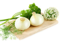 Vegetables still life. Onion. On white Stock Images