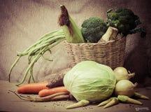 Vegetables still life. Vintage still life with vegetables Stock Images