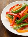 Vegetables stir-fry Stock Image