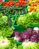 Vegetables on store shelves Royalty Free Stock Photography