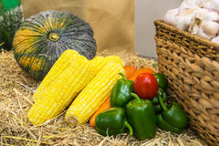 Vegetables on straw. Multiple different vegetables on straw Stock Photos