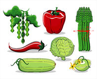 Vegetables  summer colored. On white background Royalty Free Stock Image