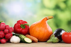 Vegetables in summer with copyspace Stock Images