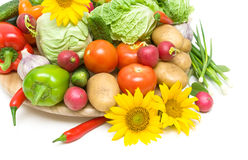 Vegetables and sunflower close-up Stock Photography