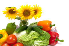 Vegetables and sunflower flowers on a white background Royalty Free Stock Image