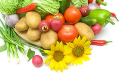 Vegetables and sunflowers on a white background. horizontal phot Royalty Free Stock Photography