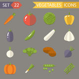 Vegetables Symbols Healthy and Healthsome Food Royalty Free Stock Image