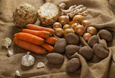 Vegetables on the table Stock Image