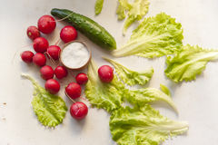 Vegetables on a table. Radish, cucumber, onion salad leafes and salt on a table stock image
