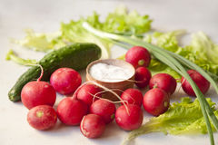 Vegetables on a table. Radish, cucumber, onion salad leafes and salt on a table stock photography