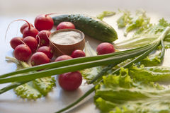 Vegetables on a table. Radish, cucumber, onion salad and salt on a table stock photo