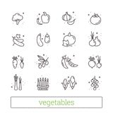 Vegetables thin line icons. Modern linear design elements, food symbols for web and interface. Isolated vector set. Vegetables thin line icons. Modern linear Stock Photography