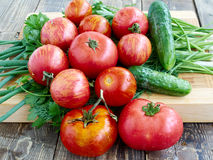 Vegetables. Tomato cucumber dill parsley onion wood background Royalty Free Stock Photos