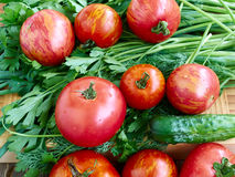 Vegetables. Tomato cucumber dill parsley onion wood background Royalty Free Stock Image