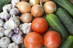 Vegetables. Tomato, cucumber, onion  and garlic, close up Stock Photography