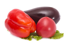 Vegetables- tomato, eggplant and pepper Stock Images