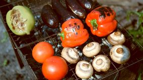 Vegetables tomato mushrooms paprika eggplant cooking on the grill outdoors stock footage