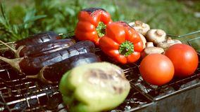 Vegetables tomato mushrooms paprika eggplant is grilled outdoors stock footage